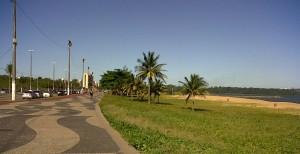 IMG00923-20110130-Camburi3
