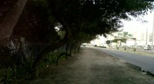 IMG01045-20110206-Norte_Sul_b